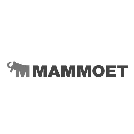 Logo van Mammoet